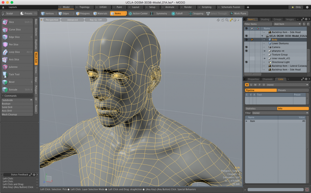 Default Modo Human Mesh Head and ShouldersCloseup