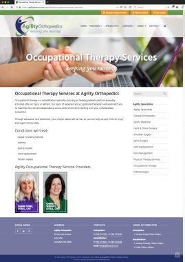 New Wordpress Website Occupational Therapy Content