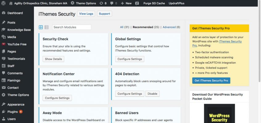 iThemes WordPress Security
