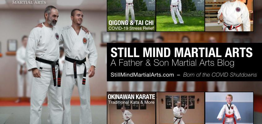 Still Mind Martial Arts - A Father & Son Martial Arts Blog