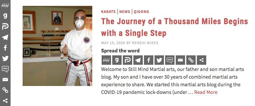 Still Mind Martial Arts Post Example