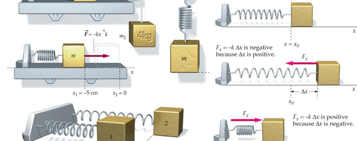 3D Scientific Illustration Infographics