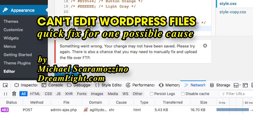 Can't edit WordPress files
