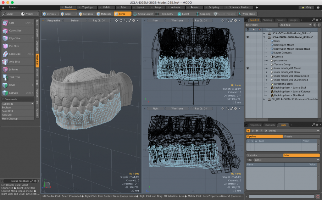 Inner Mouth Parts - Teeth, Gums, Roof of Mouth - 3D Model