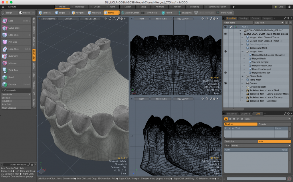 Teeth and Lower Jaw Merged into Single Mesh